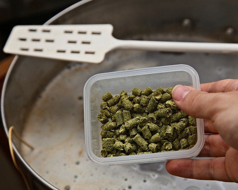 Master Your Craft Beer Making Starter Kit - Part Grain