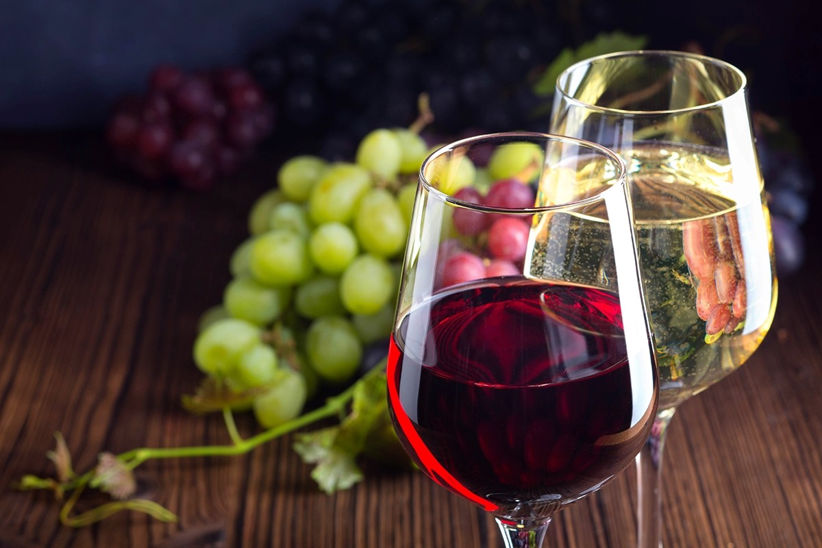 Master Your Craft Wine Making Starter Kit
